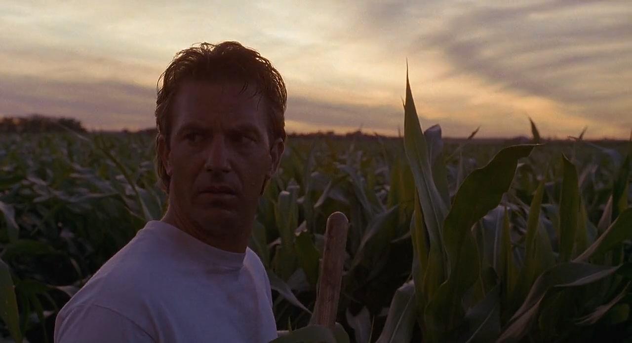 トウモロコシ畑の向こうには何が?