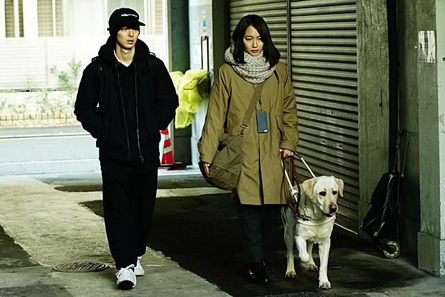 盲導犬のパルが可愛い!パルが生きてたのは救い