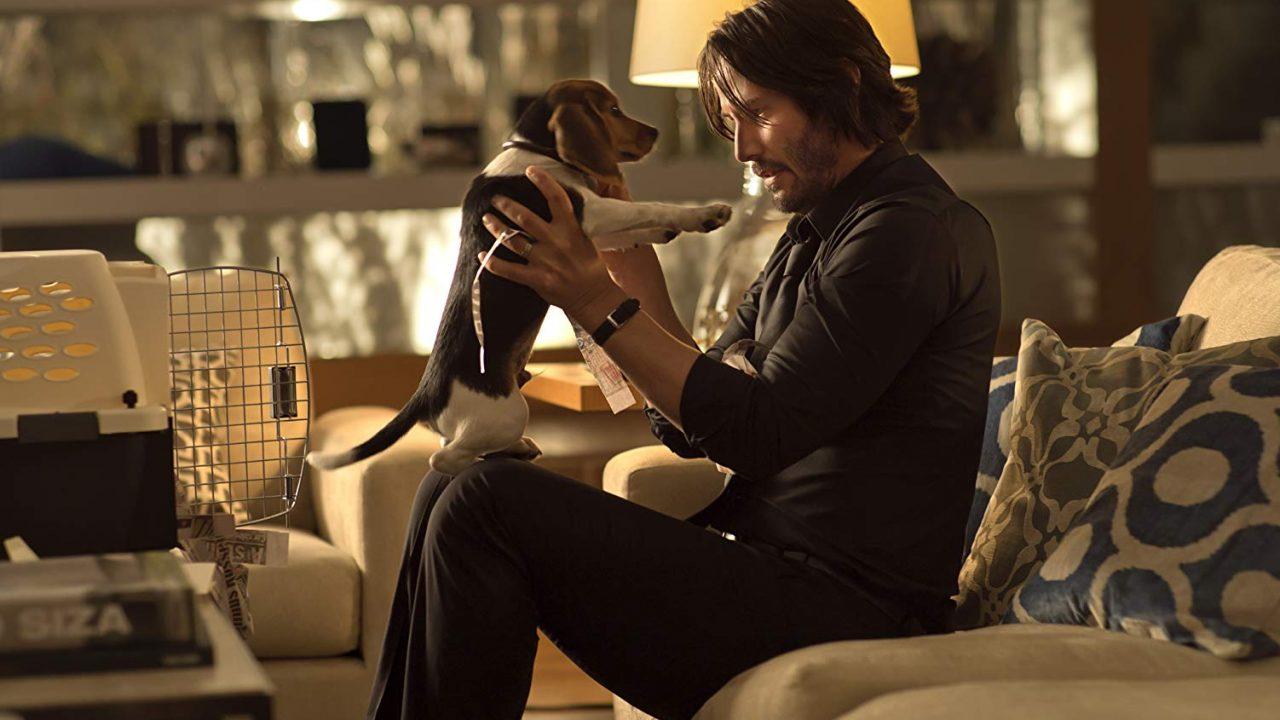 【解説】ジョンの復讐の理由は子犬を殺された事。視聴前は設定が弱いと思ったが...